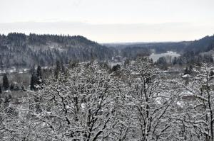 View looking down at the Willamette Narrows from the White Oak Savanna after a recent snowfall.